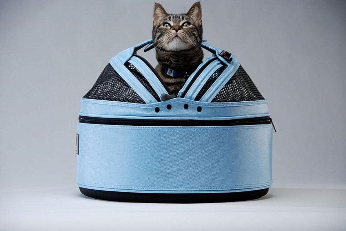 Best Carrier for Cats: A Complete Guide