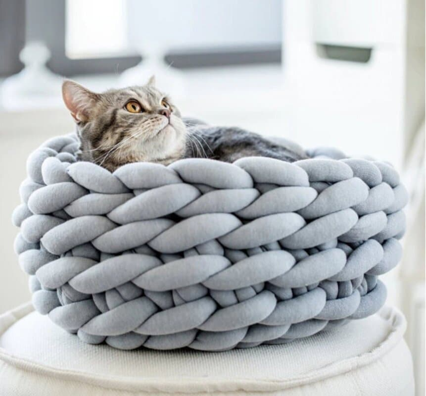 woven cat bed