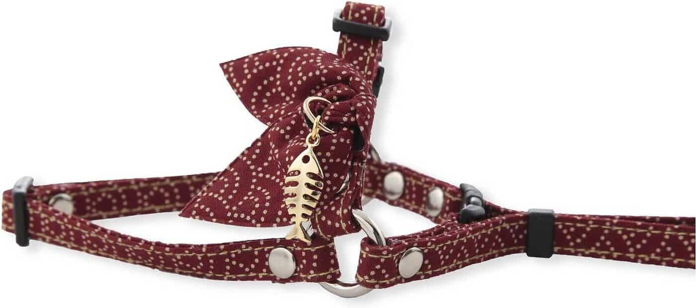 neocoichi harness