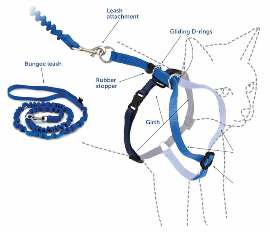 petsafe harness