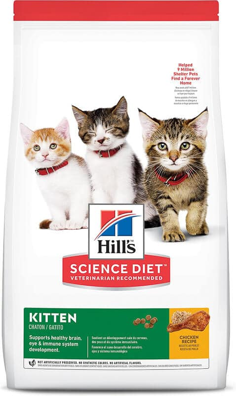 hills science diet kitten food