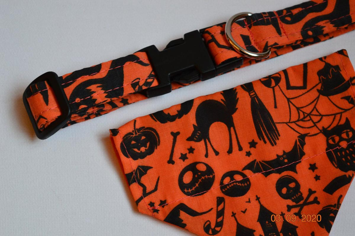 halloween cat collar and bandana set
