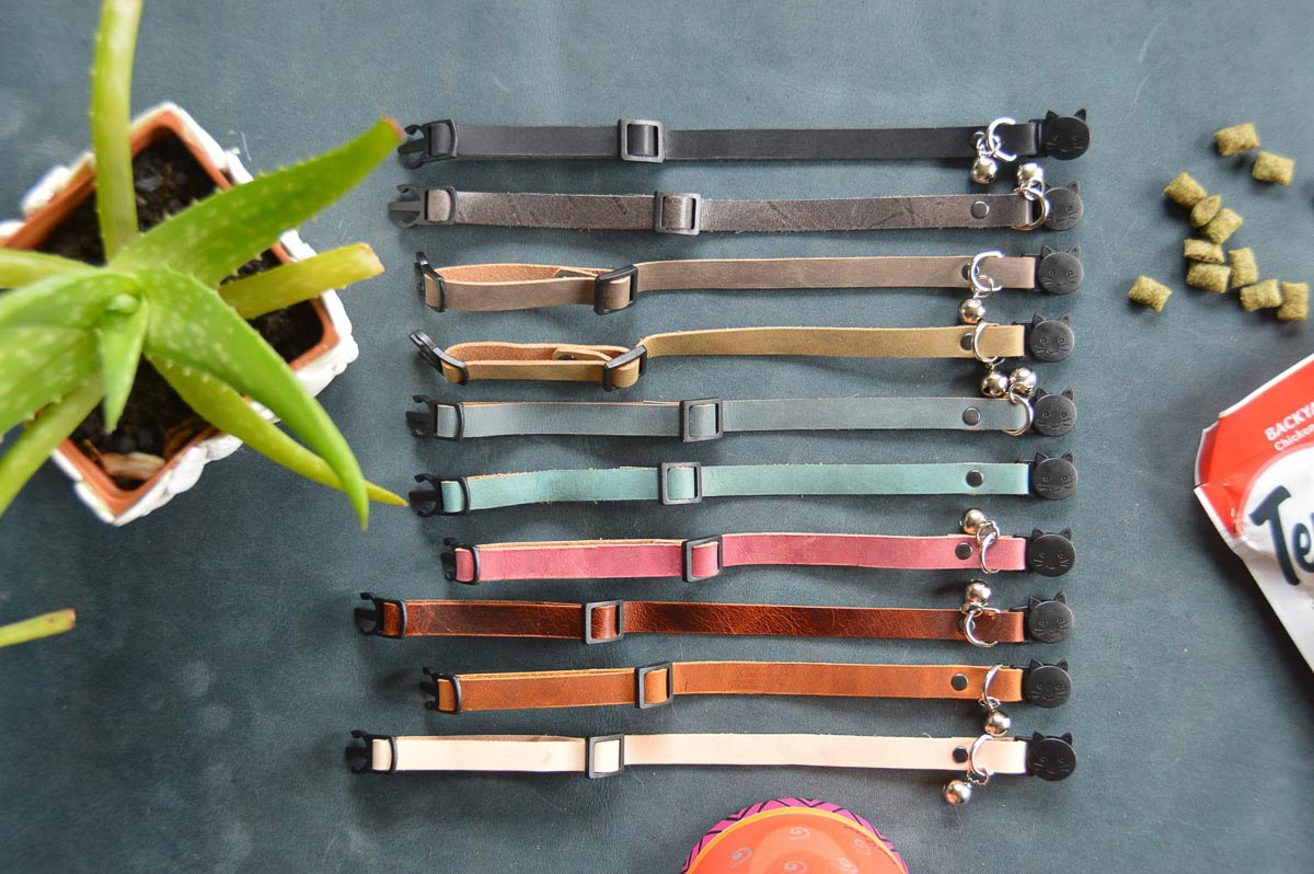 colourful leather cat collars.