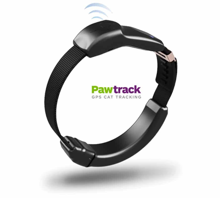 pawtracker cat collar