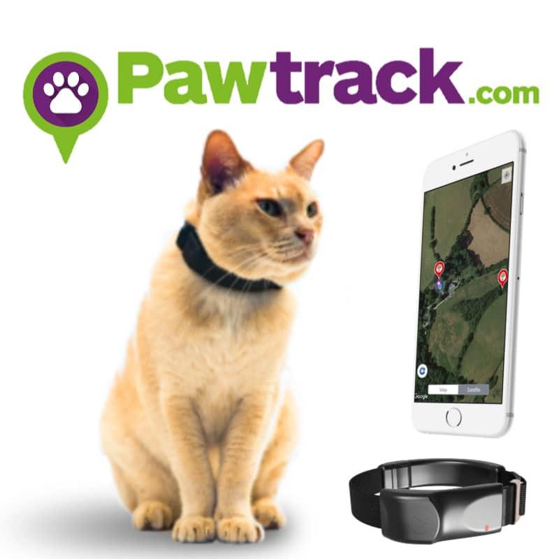 Paw Track