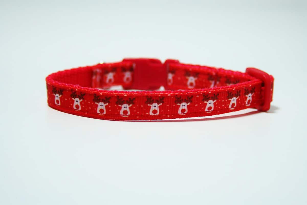 reindeer christmas cat collar