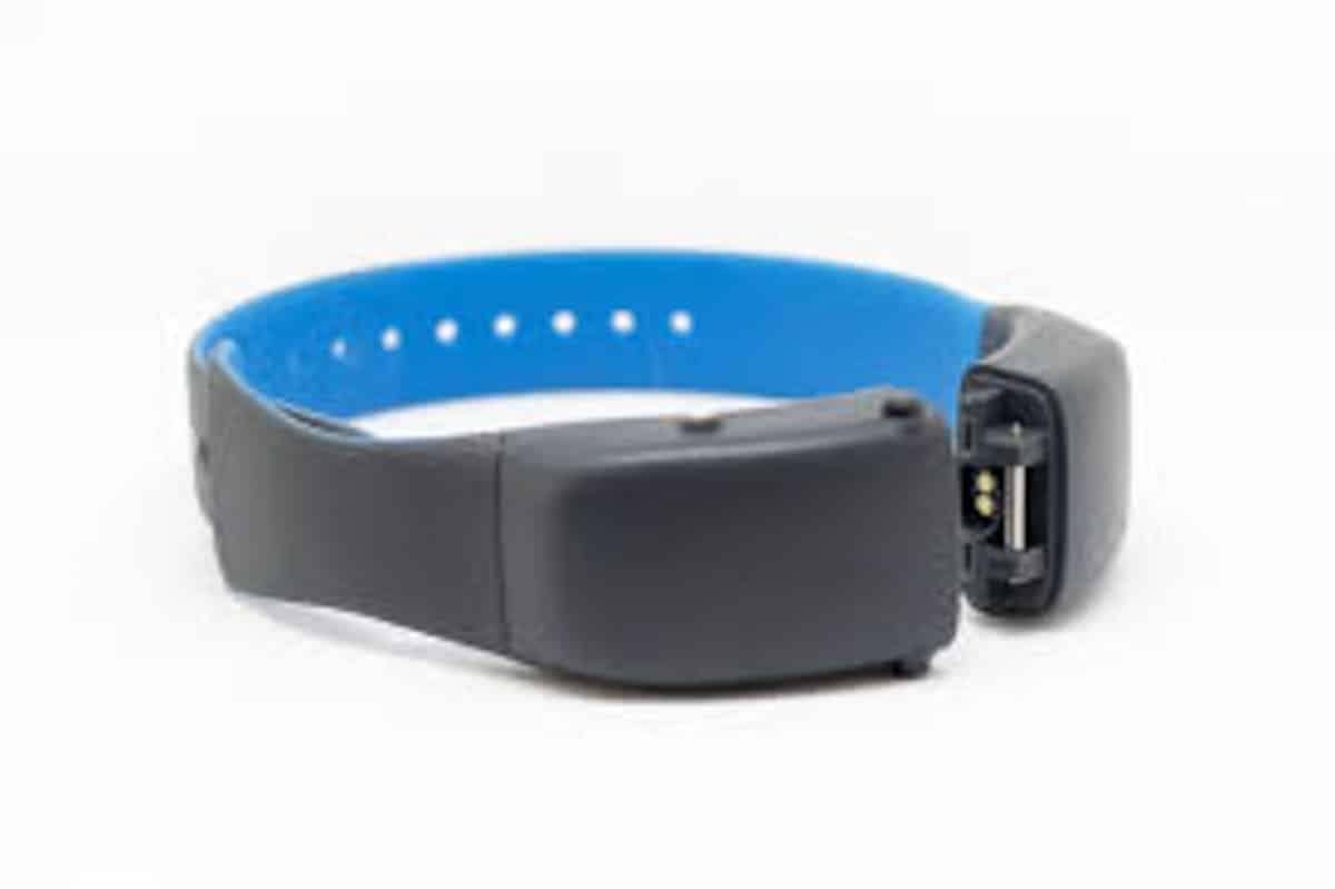 tractive gps cat collar