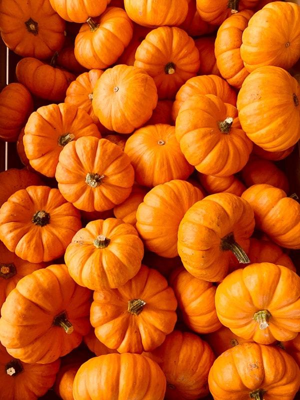 Multiple pumpkins