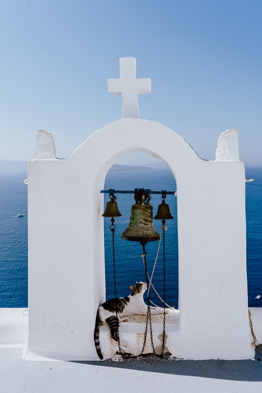 cat in front of greek church arch with bells and greek cat names
