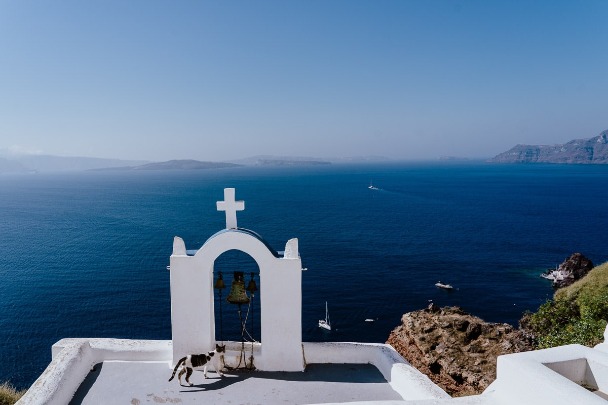 cat on roof of greek church with sea behind