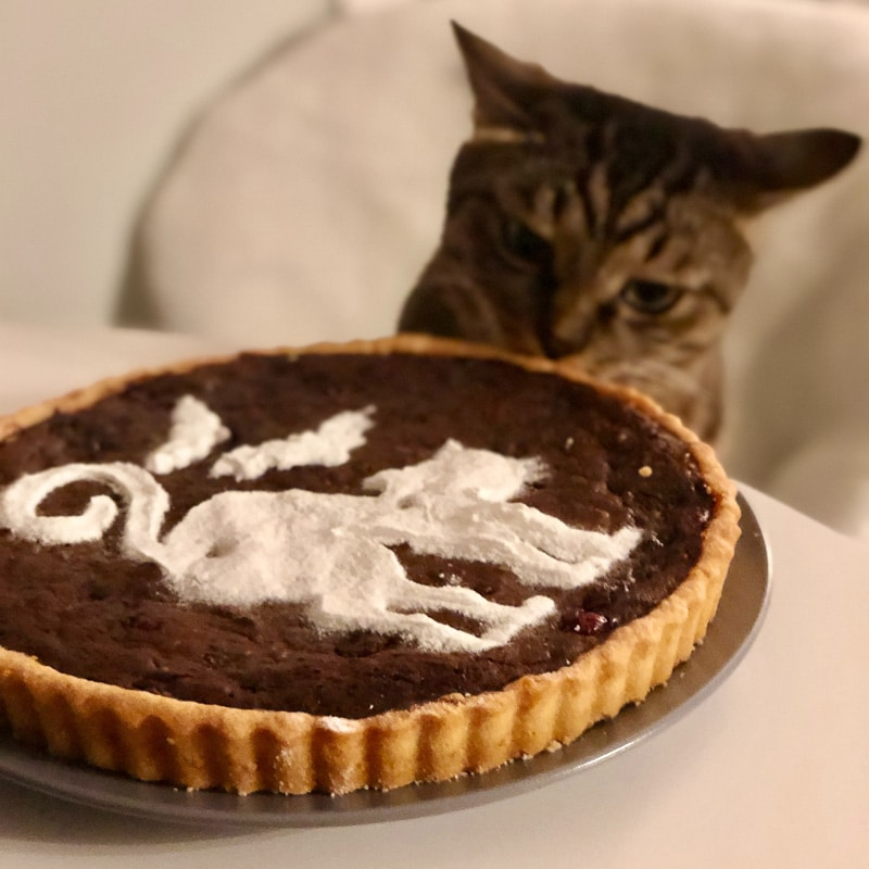 cat with chocolate tart and white cat motif