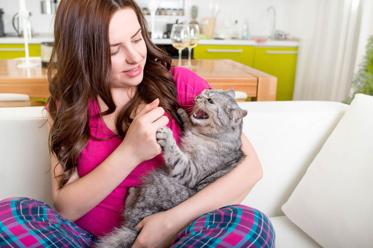 grey cat with mouth open being held by woman