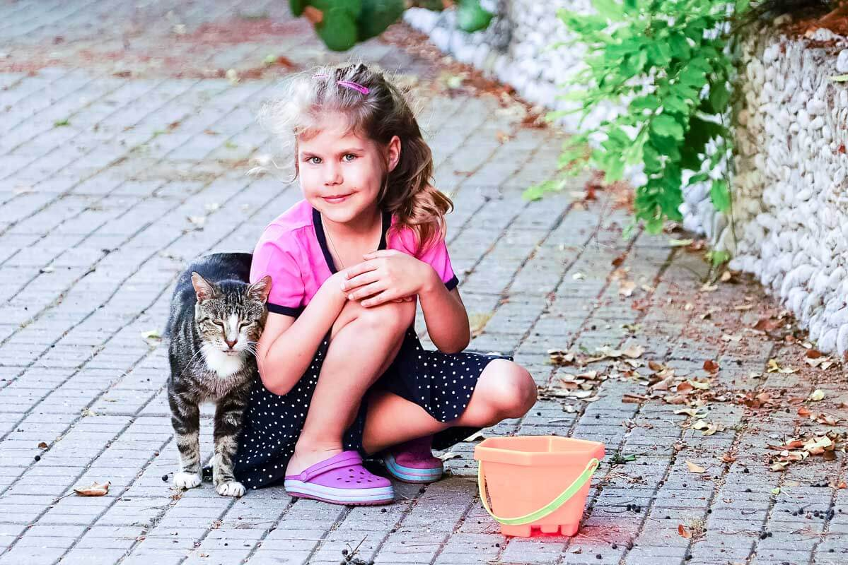 The cat rubs the girl's hand on the street .