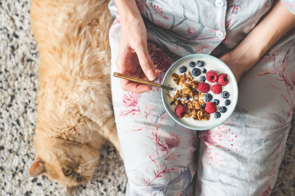woman with bowl of cerear and fruit and ginger cat
