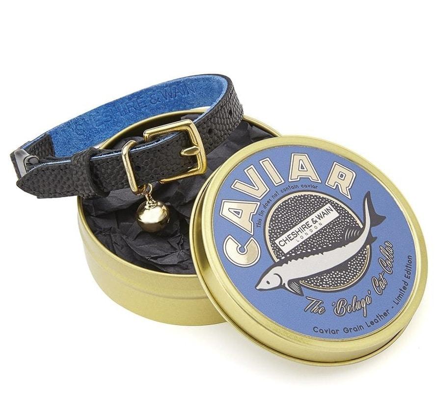 CheshireWain-Caviar designer cat collar