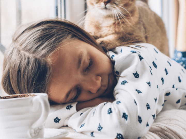 tabby cat on young girl asleep