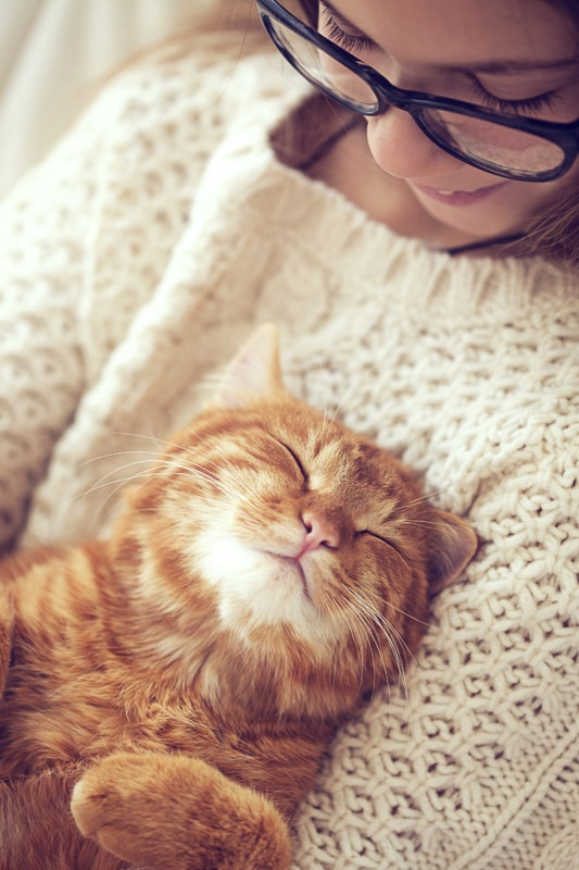 ginger cat asleep on woman's chest