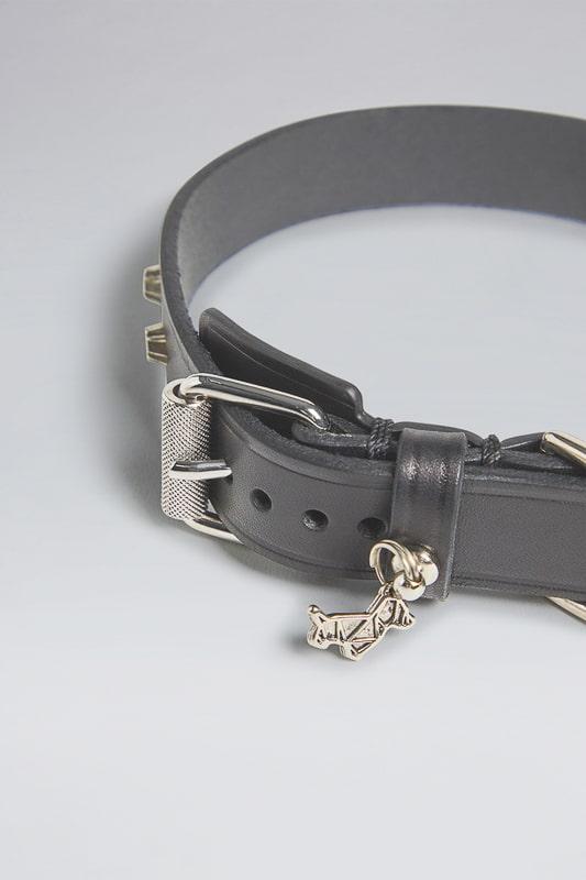 poldo d squared cat collar