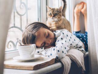 tabby cat on back of sleeping child