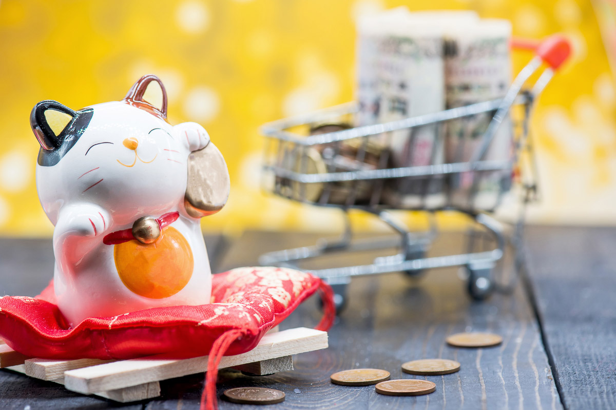 japan happy cat with shopping trolley