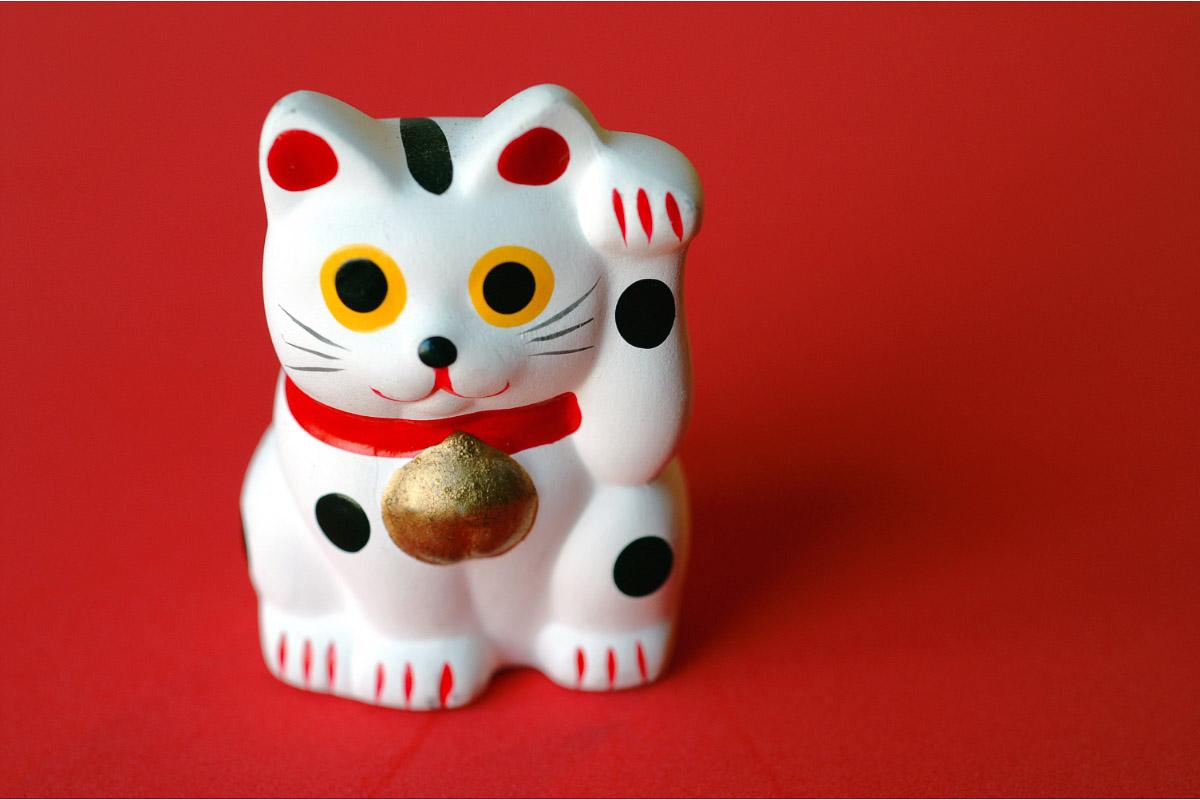 japan happy cat