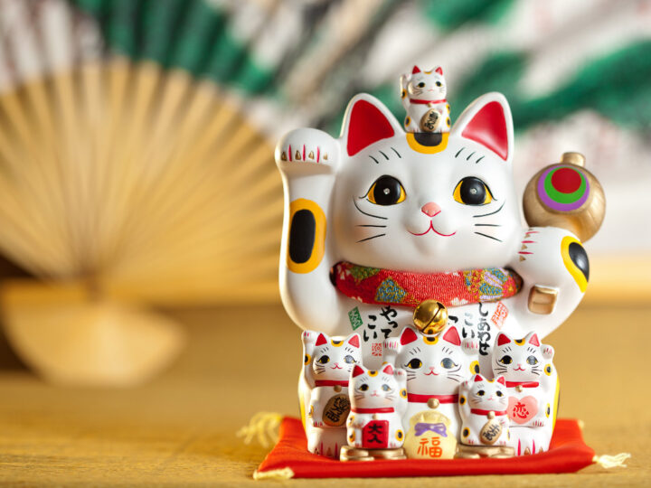 13 Japanese Cat Names Inspired by Coloring, Anime and More