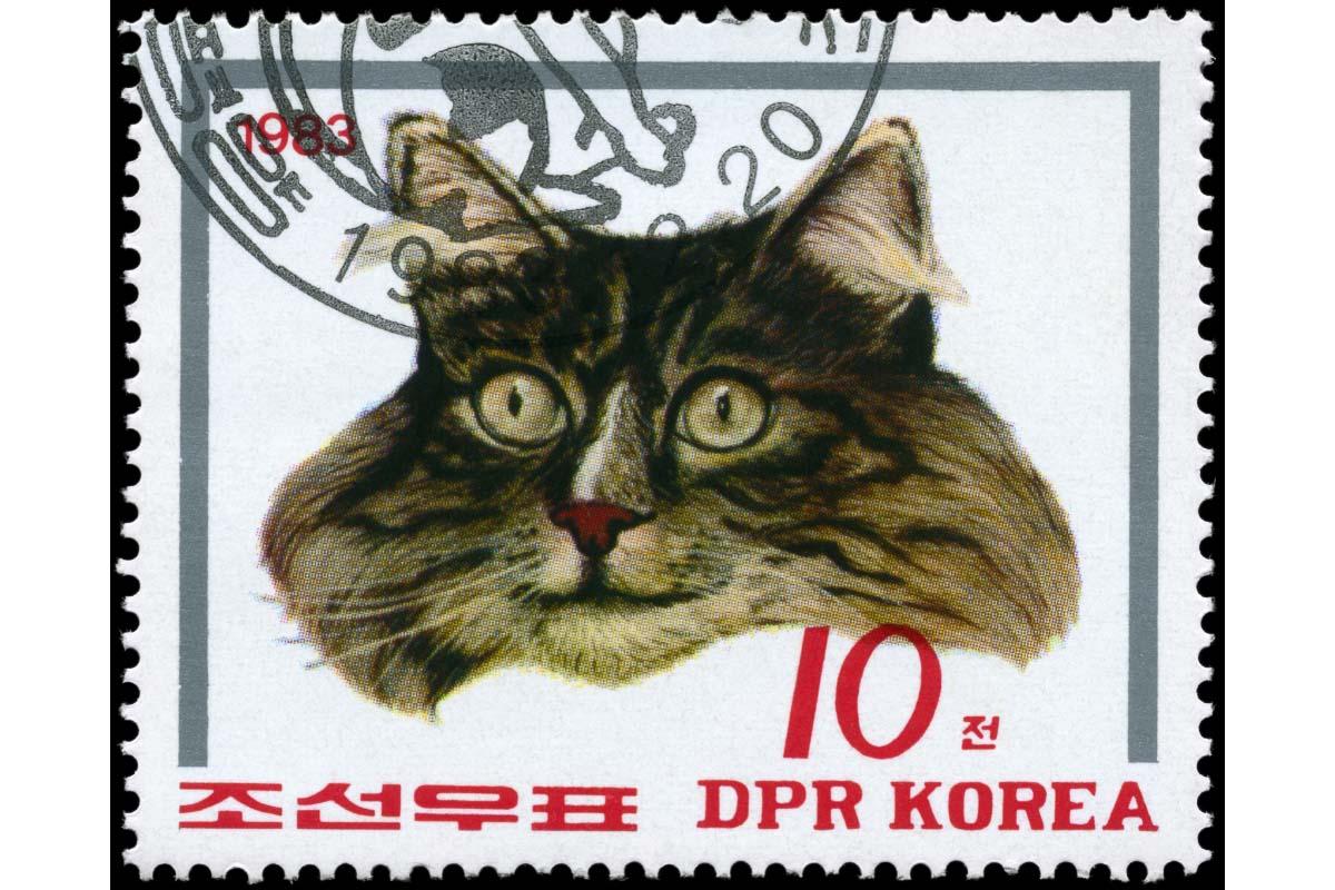 korean cat stamp