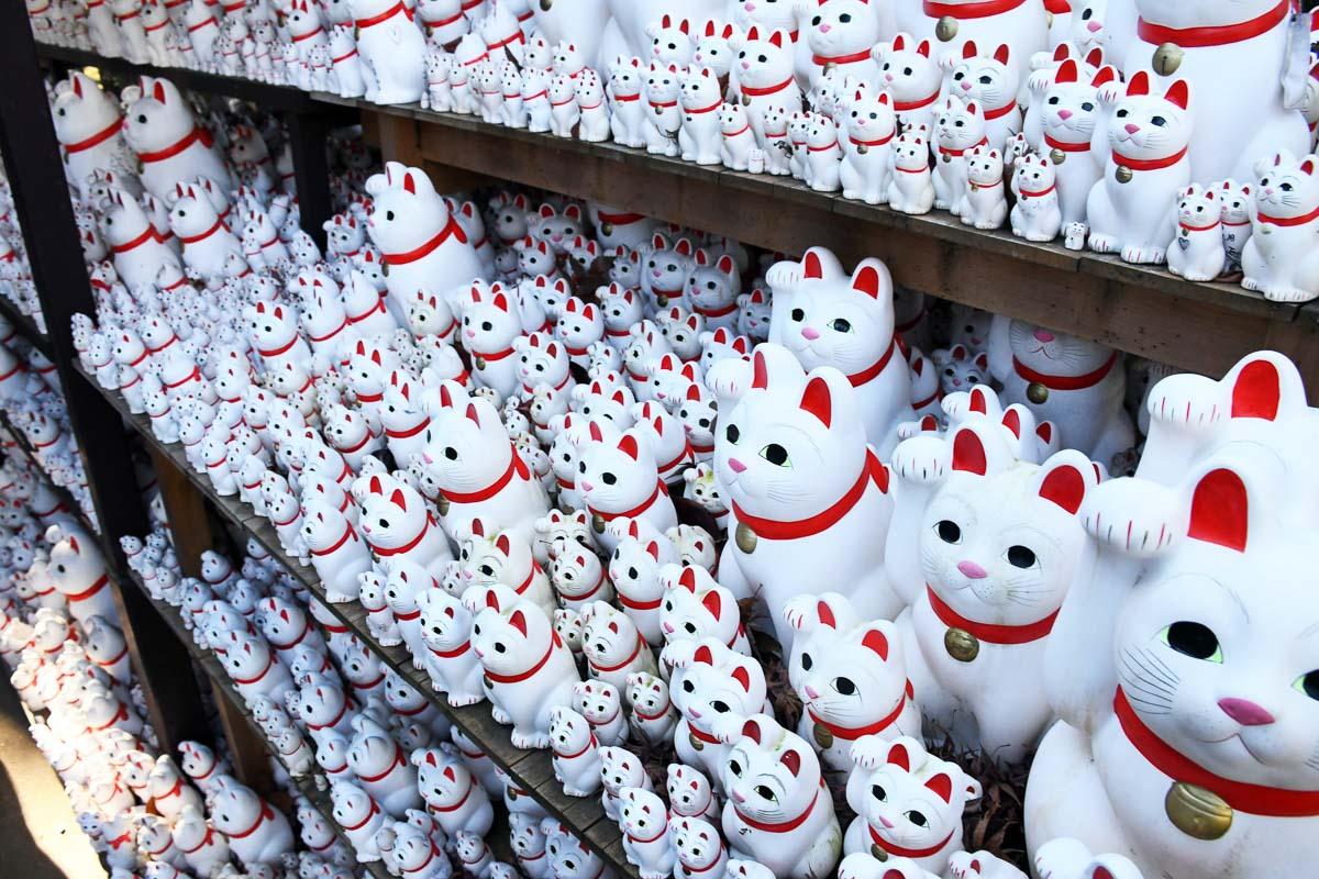 multiple white japanese cat statues