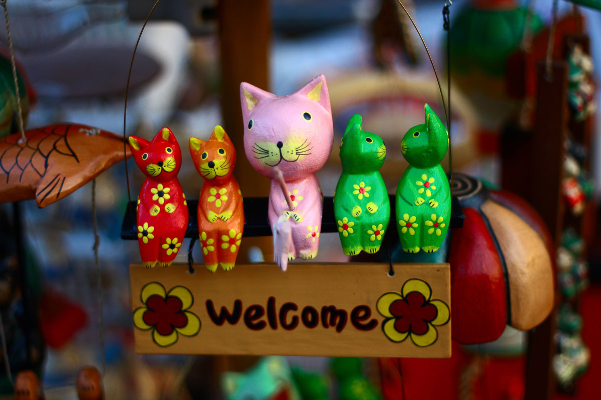 toy cats in south korea